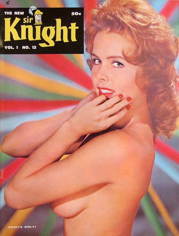 sirknight-v1-12