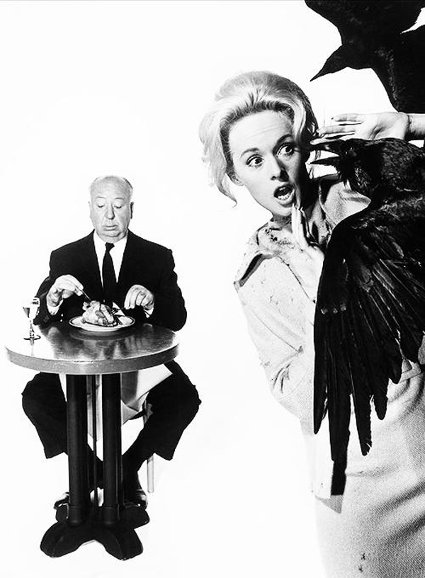 hitchcock-and-the-birds-L-RTRldZ
