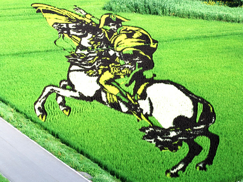 tanbo-japanese-rice-field-art-1