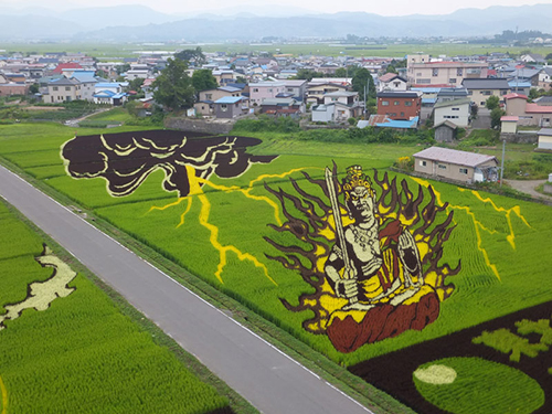 tanbo-japanese-rice-field-art-8