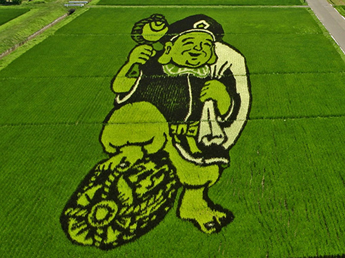 tanbo-japanese-rice-field-art-9