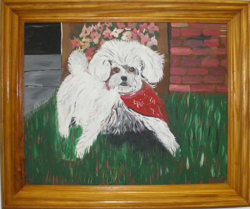 tomsextondog