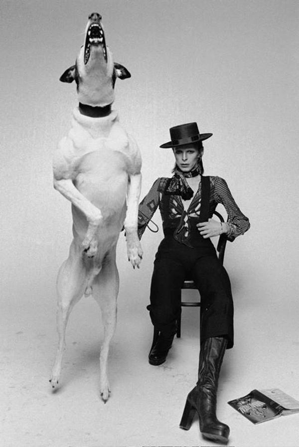 The famous Diamond Dogs promo shot