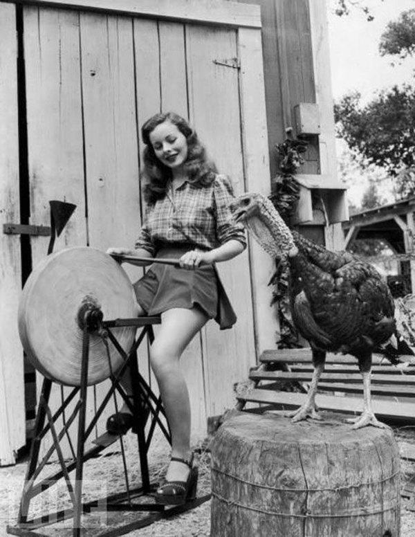 vintage-pinup-thanksgiving-turkey-ax-grindstone