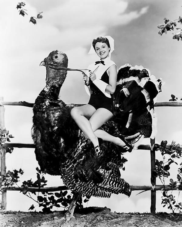 vintage turkey 2