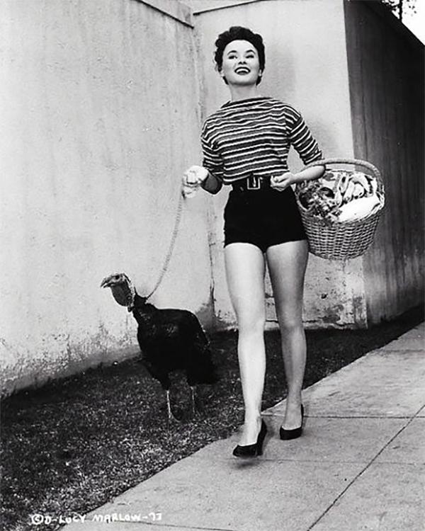 vintage-turkey-6