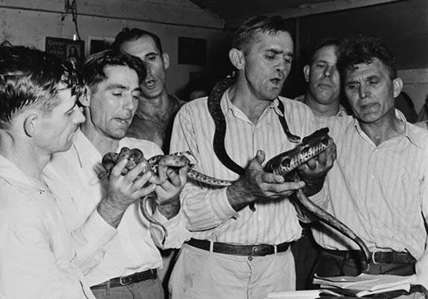 snake handler9