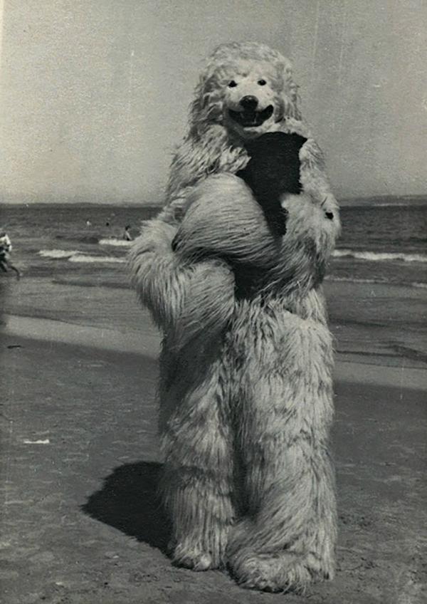 TeddyBär (11)