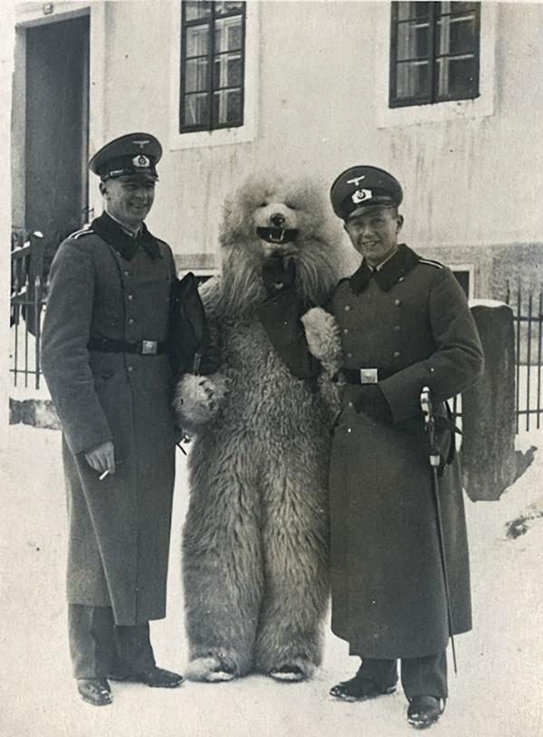 TeddyBär (14)